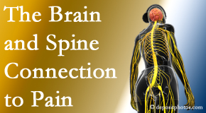 Dr. Hoang's Chiropractic Clinic looks at the connection between the brain and spine in back pain patients to better help them find pain relief.