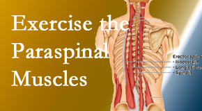 Dr. Hoang's Chiropractic Clinic explains the importance of paraspinal muscles and their strength for Montreal back pain relief.