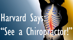 Montreal chiropractic for back pain relief urged by Harvard