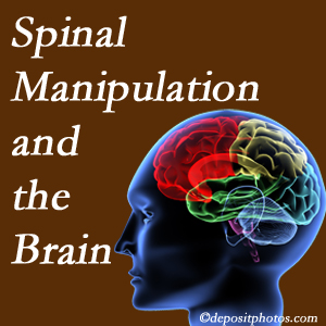 Dr. Hoang's Chiropractic Clinic [shares research on the benefits of spinal manipulation for brain function.